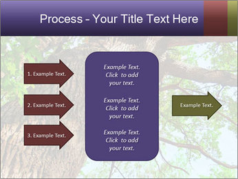 Old Oak PowerPoint Template - Slide 85