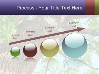 Old Oak PowerPoint Template - Slide 87