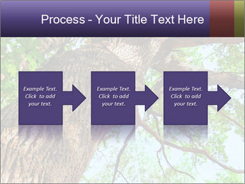 Old Oak PowerPoint Template - Slide 88