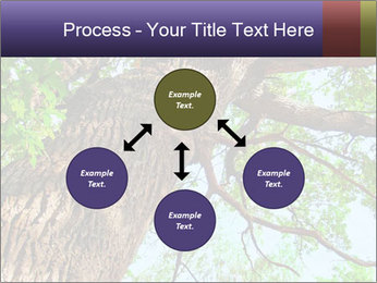 Old Oak PowerPoint Template - Slide 91