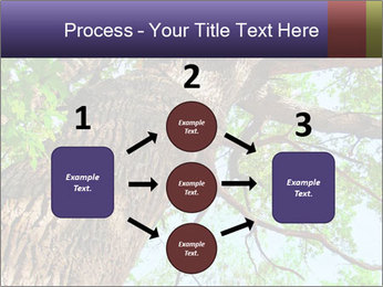 Old Oak PowerPoint Template - Slide 92
