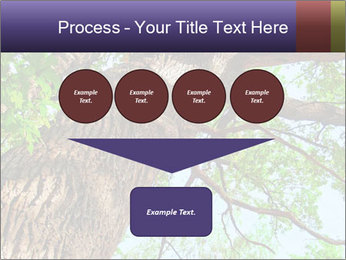 Old Oak PowerPoint Template - Slide 93