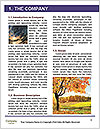 0000089213 Word Template - Page 3