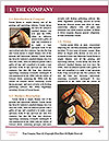 0000089215 Word Templates - Page 3