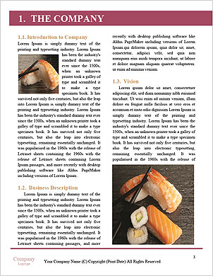 0000089215 Word Template - Page 3