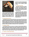 0000089215 Word Template - Page 4