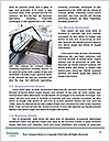 0000089216 Word Template - Page 4