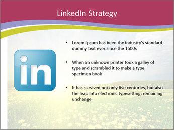 Yellow Summer Field PowerPoint Template - Slide 12