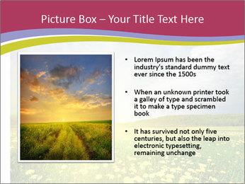 Yellow Summer Field PowerPoint Template - Slide 13