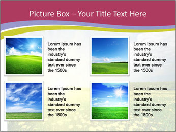 Yellow Summer Field PowerPoint Template - Slide 14