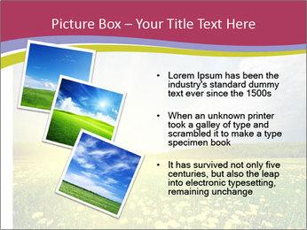 Yellow Summer Field PowerPoint Template - Slide 17