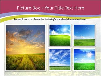 Yellow Summer Field PowerPoint Template - Slide 19
