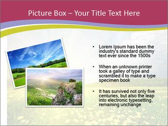 Yellow Summer Field PowerPoint Template - Slide 20
