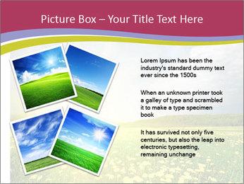 Yellow Summer Field PowerPoint Template - Slide 23
