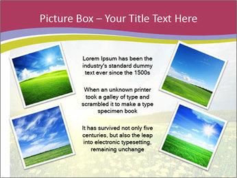 Yellow Summer Field PowerPoint Template - Slide 24