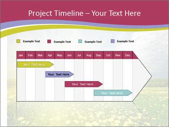 Yellow Summer Field PowerPoint Template - Slide 25