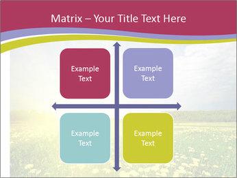 Yellow Summer Field PowerPoint Template - Slide 37