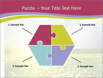 Yellow Summer Field PowerPoint Template - Slide 40