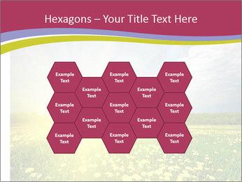 Yellow Summer Field PowerPoint Template - Slide 44
