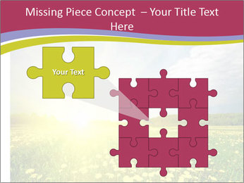 Yellow Summer Field PowerPoint Template - Slide 45