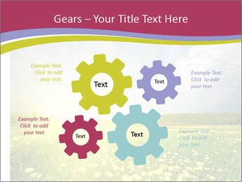 Yellow Summer Field PowerPoint Template - Slide 47