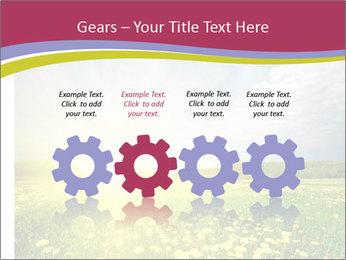 Yellow Summer Field PowerPoint Template - Slide 48