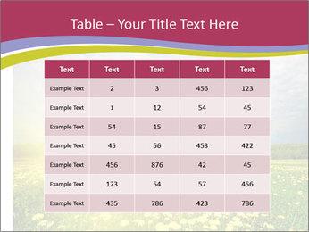 Yellow Summer Field PowerPoint Template - Slide 55