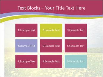 Yellow Summer Field PowerPoint Template - Slide 68