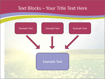 Yellow Summer Field PowerPoint Template - Slide 70