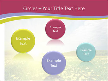 Yellow Summer Field PowerPoint Template - Slide 77