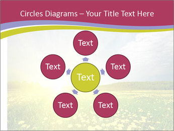 Yellow Summer Field PowerPoint Template - Slide 78