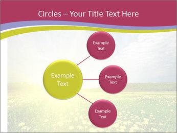 Yellow Summer Field PowerPoint Template - Slide 79