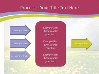 Yellow Summer Field PowerPoint Template - Slide 85