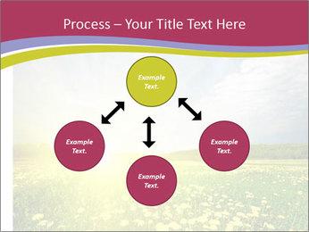 Yellow Summer Field PowerPoint Template - Slide 91
