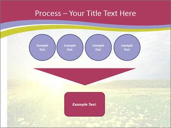Yellow Summer Field PowerPoint Template - Slide 93
