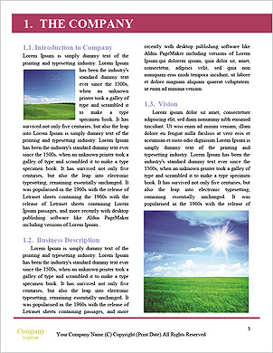 0000089217 Word Template - Page 3