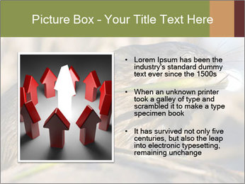 Green Spring PowerPoint Template - Slide 13