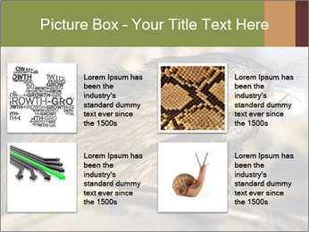 Green Spring PowerPoint Template - Slide 14