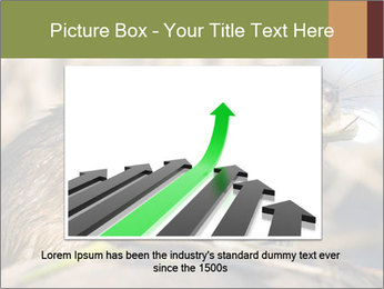 Green Spring PowerPoint Template - Slide 15