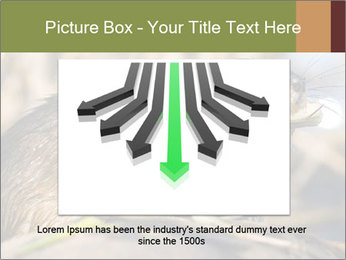 Green Spring PowerPoint Template - Slide 16