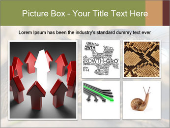 Green Spring PowerPoint Template - Slide 19