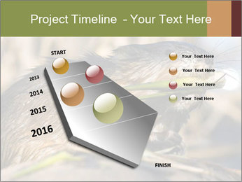 Green Spring PowerPoint Template - Slide 26