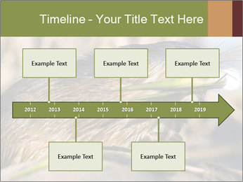 Green Spring PowerPoint Template - Slide 28