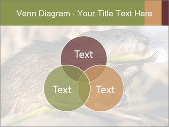 Green Spring PowerPoint Templates - Slide 33