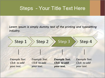 Green Spring PowerPoint Template - Slide 4