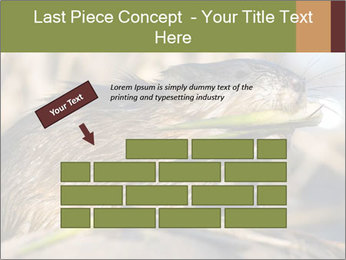Green Spring PowerPoint Template - Slide 46
