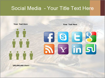 Green Spring PowerPoint Template - Slide 5