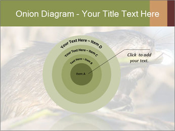 Green Spring PowerPoint Templates - Slide 61