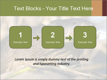 Green Spring PowerPoint Template - Slide 71