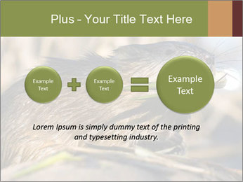 Green Spring PowerPoint Template - Slide 75